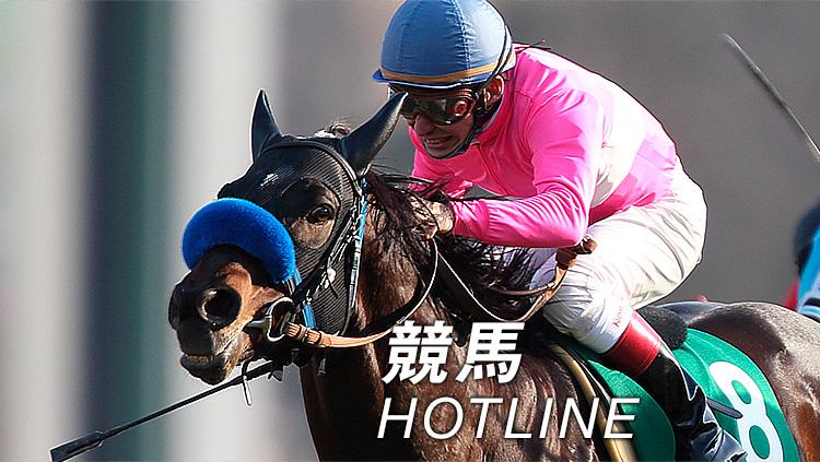 【日中京5R】水曜坂路で最速!馬券的にも穴で面白そうな1頭!
