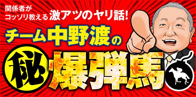 """【チーム中野渡】特大配当のカギを握る""""爆弾馬""""をコッソリお届け!"""